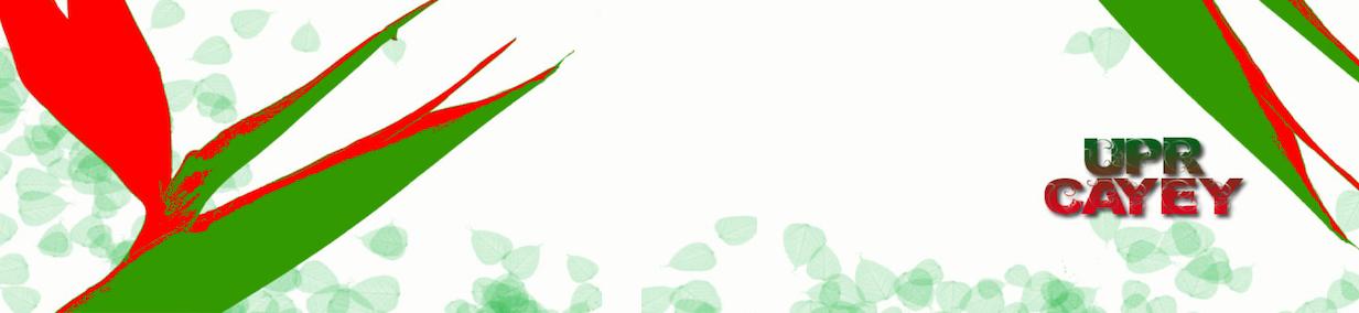 Banner representativo de los Dept Académicos
