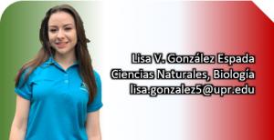 Imagen representativa a la información de Lisa V. González Espada